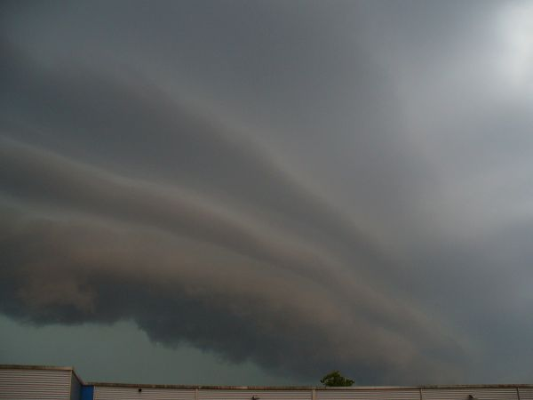 shelfcloud2.jpg