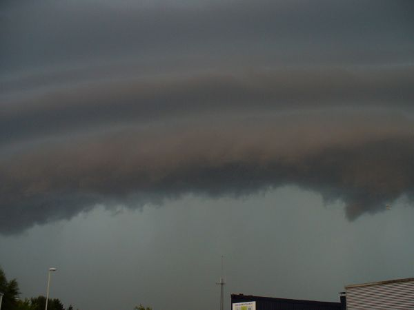 shelfcloud3.jpg