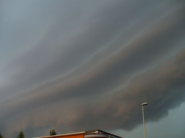shelfcloud4.jpg